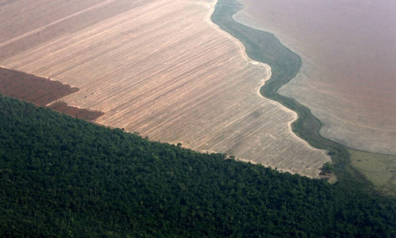 x74212628_REFILEREMOVING-RESTRICTIONSFILE-PHOTO-An-aerial-view-shows-the-Amazon-rainforest-bott.jpg.pagespeed.ic.PGgu2itSgH.jpg